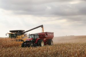 ruralni-razvoj-modernizacija