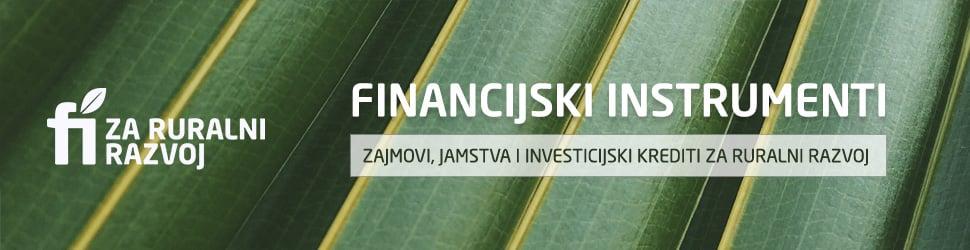Financijski instrumenti