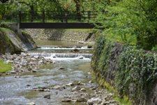 most_mjera7